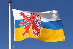 Vlag provincie Limburg Flag, Science, Flags