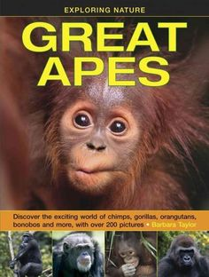 This lively book for 8- to 12-year-olds investigates all four groups of great ape living in the wild, with fascinating insights into every aspect of ape life.