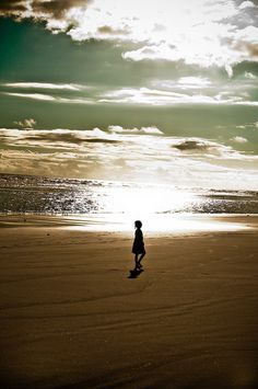 """""""Just as the wave cannot exist for itself, but is ever a part of the heaving surface of the ocean, so must I never live my life for itself, but always in the experience which is going on around me."""" Albert Schweitzer"""