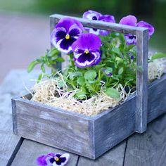 simple and cute - love pansies!