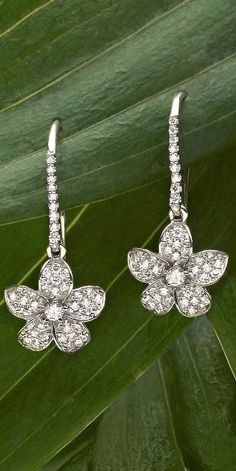 Love these romantic and feminine diamond earrings.