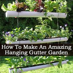 How To Make An Amazing Small Space Hanging Gutter Garden