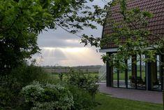 Woolness auf Texel