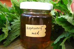 Jak na domácí kopřivový med | recept Home Canning, Preserves, Pickles, Med, Detox, Salsa, Food And Drink, Homemade, Health