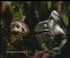These lovable lizards are having trouble dealing with the Budweiser frogs commercial success.