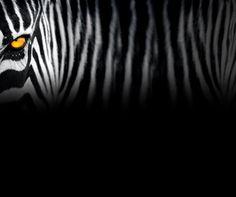 Juventus FC website Background. Bisa juga buat dijadikan Wallpaper.