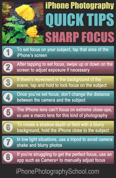 8 Quick Tips For Getting Perfectly Focused iPhone Photos