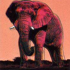 Andy Warhol, Endangered Species: African Elephant, 1983