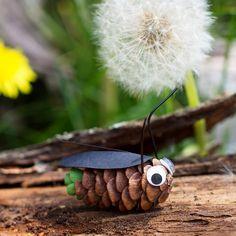 Käfer basteln mit Kiefernzapfen und Papier