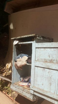 Bee removal in Johannesburg, removed bees in a Cardboard in Pancres street Jo'burg