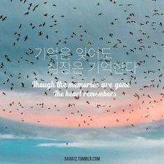 Korean Language 808888783049180038 - Memories ❤ Source by Korean Words Learning, Korean Language Learning, How To Speak Korean, Learn Korean, Korea Quotes, K Quotes, Tattoo Quotes, Learn Hangul, Korean Tattoos