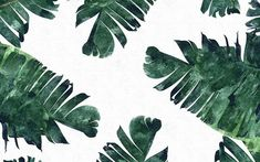 watercolour palm leaves