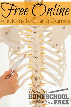 Add these FREE Online Anatomy Learning Games to your homeschool! via /survivingstores/