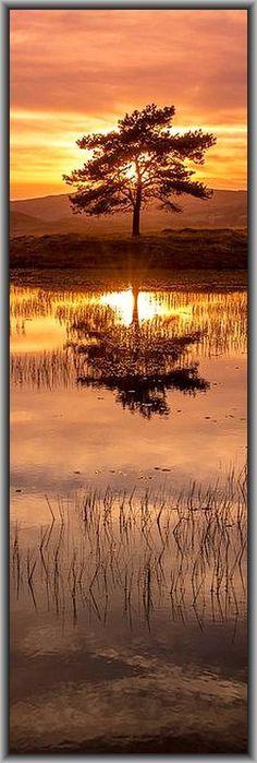 AMAZING SUNSET -  Kelly Hall Tarn - Sunny Bank, UK - England, Vereinigtes Königreich     #by Bardsea Photography on flickr.com