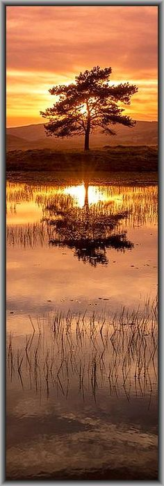 AMAZING SUNSET -  Kelly Hall Tarn - Sunny Bank, UK - England, Vereinigtes Königreich     #by Bardsea Photography on flickr.com