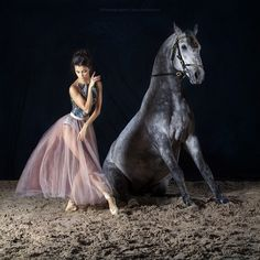 Horse Girl Photography, Dance Photography, Animal Photography, Pretty Horses, Horse Love, Beautiful Horses, Dance Photo Shoot, Dance Photos, Horse Dance
