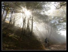 #PirineosNavarra  #NavarraNaturalmente  #TurismoRural   #TurismoNavarra
