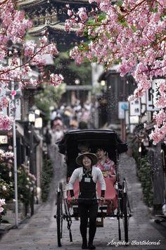 Paseo por Kyoto Japón me enamora