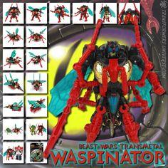 Transformers Universe - Beast Wars Transmetal Waspinator
