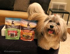To Dog With Love: Hill's Ideal Balance Natural Dog and Cat Treats #Giveaway! Ends 12/4/13 http://www.todogwithlove.com/2013/11/hills-ideal-balance-natural-dog-and-cat.html