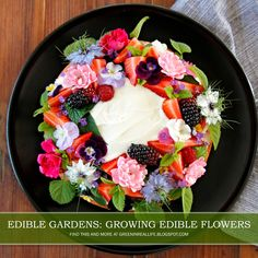 Urban garden adventures with a sprinkle of everyday greener living: growing more, wasting less, and real life changes. Edible Flowers, Edible Garden, Acai Bowl, Real Life, Gardens, Eat, Breakfast, Recipes, Beautiful