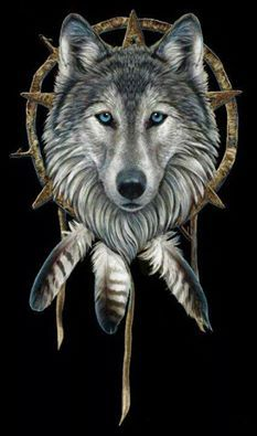 CODE OF THE WOLF has members. Only post wolf pictures and wolf video's please Protect your family Honor your Elders' Teach the young Be loyal to. Native American Wolf, Native American Pictures, American Indian Art, Wolf Totem, Wolf Dreamcatcher, Indian Wolf, Dream Catcher Art, Wolf Artwork, Fantasy Wolf