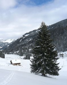 Morgins, Valais, Switzerland