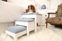 Shop luxury décor for pampered pets! The Fursatile 3 Step is stylish and versatile. Proof that pet steps can be beautiful! Pet friendly home décor that is one-of-a-kind and chic as ever. Pet Steps For Bed, Dog Stairs For Bed, Dog Ramp For Bed, Dog Steps, Diy Dog Bed, Steps For Dogs, Animal Room, Animal Decor, Dog Furniture