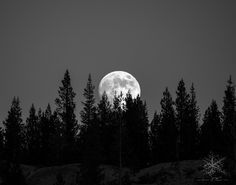 Moonrise Glen Aulin 11X14 P7310590 by Shutterspeedblog - The Moon Photo Contest