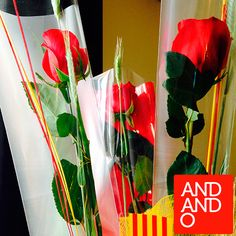 Les roses d'Andando! :-) #SantJordi2015