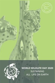 World Wildlife Day 2020's theme is: sustaining all life on earth, which is a goal very close to our hearts. We call on you all to celebrate the beautiful and richly diverse forms of  wild animals and plants on our planet; and please pledge to do your best every day to preserve and honour them.  #DianaCarmichaelCares #SustainingAllLife #WorldWildlifeDay Wildlife Day, Do Your Best, Our Planet, Wild Animals, Preserve, Sustainability, Diana, Goal, Hearts