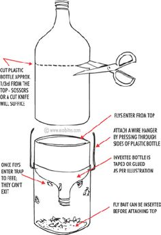 DIY Fly Trap this is ideal for the onslaught of flies we have started to experience!!