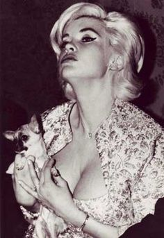 Two shots of Jayne Mansfield at home, with one of her chihuahua pups. while Jayne's in negligee, reading on sofa (above) then on her bed (middle). Below is a public glamour shot. Though chihuahuas were always her first loves among dogs, she also adored her Great Dane named Lord Byron, and a pekinese named Powder Puff.