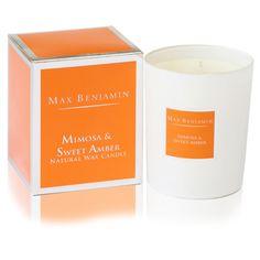 Max Benjamin Candle - Mimosa & Sweet Amber – Luxodec