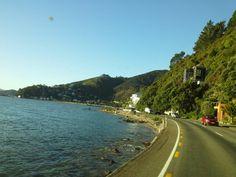Eastbourne, Lower Hutt, New Zealand Where I spent my childhood summers ❤ Wellington New Zealand, New Zealand North, New Zealand Houses, All Things New, British Isles, Terra, Hobbit, Kiwi, Places Ive Been
