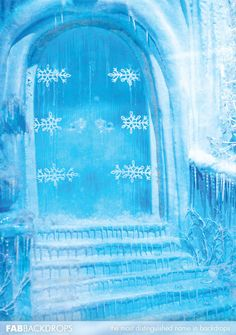 Frozen Ice Doors Photography Backdrop