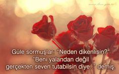 """Güle sormuşlar: """"Neden dikenlisin?"""" """"Beni yalandan değil gerçekten seven tutabilsin diye.."""" demiş. www.love.gen.tr #Aşk #Sevgi"""