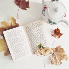 Books and tea and cold  mornings