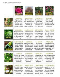 Calendario del jardinero Junio