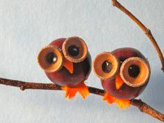 kleine Eulen aus Kastanie und Eichelhütchen