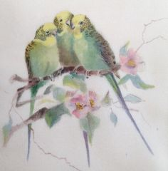 a trio of budgies I Like Birds, Birds And The Bees, Vintage Birds, Vintage Images, Bird Illustration, Illustrations, Parrot Drawing, Decoupage, Granny Chic