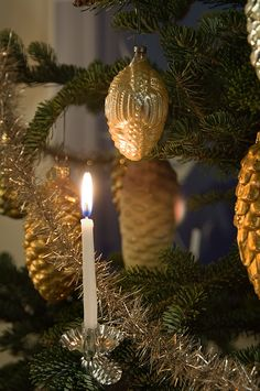 "§§§ . The candles held atop the trees branches in metal pine cone-shaped clips from Germany create a beautiful flickering warm light unparalleled by modern electric lights. When my Dad was a boy in a rural German-speaking church, they were lit only on Christmas Eve... and ushers stood ready ""with buckets of wet sand"" in case a flame went astray..."