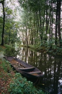 Spreewald (Spree Forest) witha a typical Spree Forest small boat.