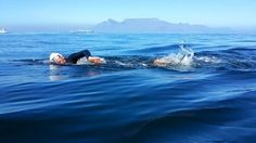 """In what can only be described as perfect conditions, Zac Ellis completed one of his """"Bucket List"""" items on Sat 11 April with a 2 Hour Maiden Crossing in the Freedom Day Swim – Robben Island to Big Bay. Big Bay, Freedom Day, Christian Families, Family Values, Champs, Bucket, Waves, Swimming, Island"""