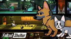 Major Fallout Shelter update is live. And it adds pets!