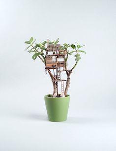 plantes-cabanes-miniatures-2