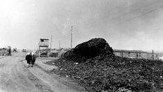 Bergen Belsen, Germany, April 1945, A pile of bones.
