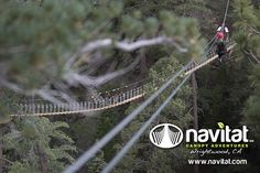 Zipping over the sky bridge at Navitat - Wrightwood, CA