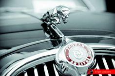 © Igor Sclausero #car #vintage #jaguar