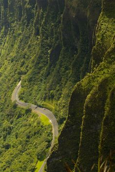 This reminds me of my Hawaii :-)  Love this road the road side people that sell wonderful foods and great coconuts!